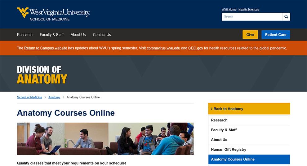 Anatomy Courses Online