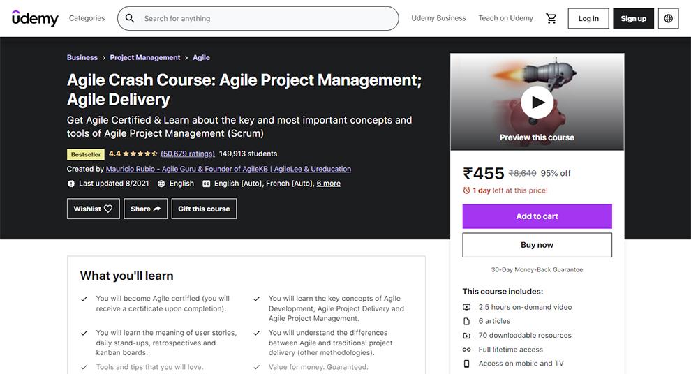 Agile Crash Course: Agile Project Management; Agile Delivery